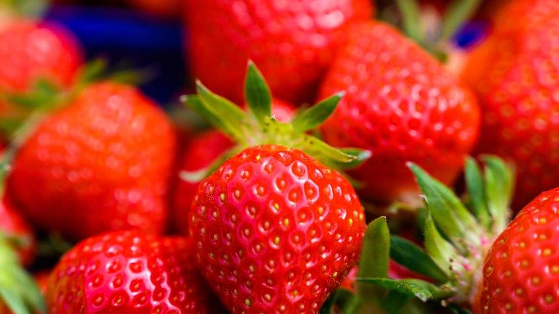 Erdbeeren in Kassel: Wo ihr die süßen Früchte kaufen oder selber pflücken könnt und was ihr mit ihnen machen könnt, erfahrt ihr in unseren Tipps.