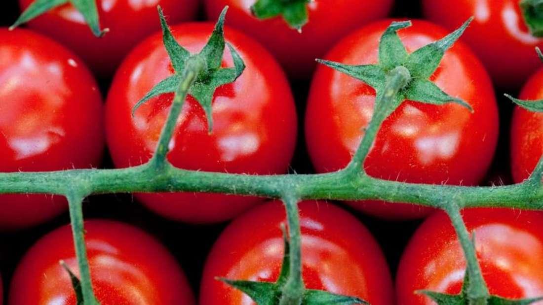 Wer kein Histamin verträgt, bekommt nach dem Verzehr von Tomaten mitunter Beschwerden. Foto: Klaus-Dietmar Gabbert