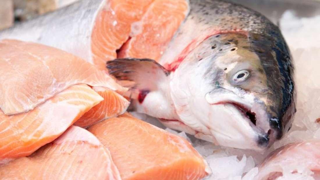 Fettreiche Fischarten wie Lachs bieten einen weitaus höheren Anteil an langkettigen Omega-3-Fettsäuren als fettarme Arten (Symbolbild).