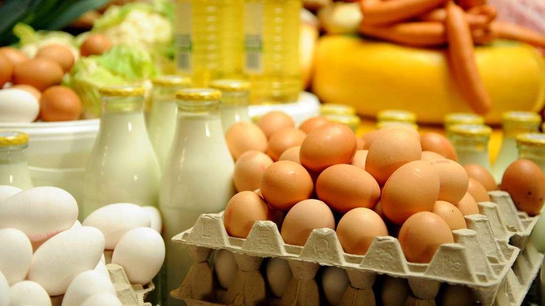 Tierische Lebensmittel wie Eier, Milch und Fleischwaren (Symbolbild).